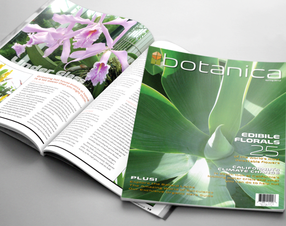 Botanic Magazine Layout
